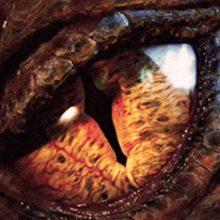 Viendo: El hobbit, un viaje inesperado + El hobbit, la desolación de Smaug